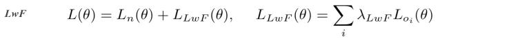 loss_LwF.png