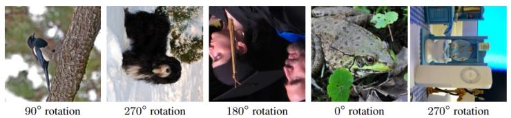 rotation1